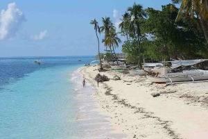 bohol-dolphin-island-tour-013
